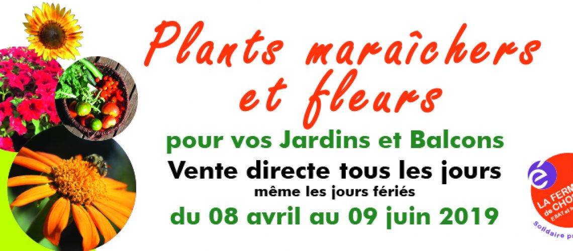 ferme-chosal-Vente-fleurs-facebook-2019